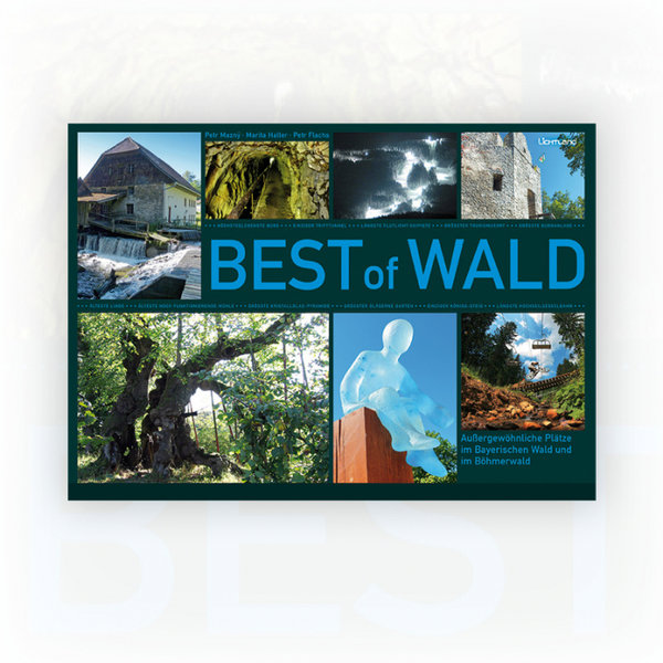 Best of Wald